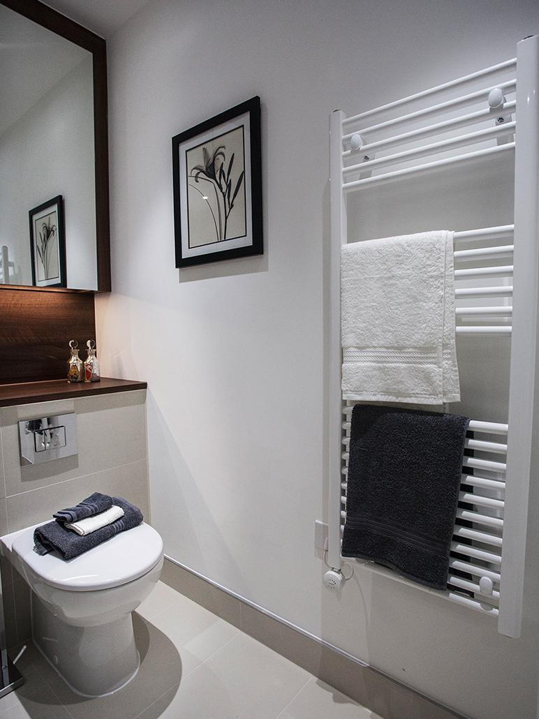Luxury bathroom interior for show flat