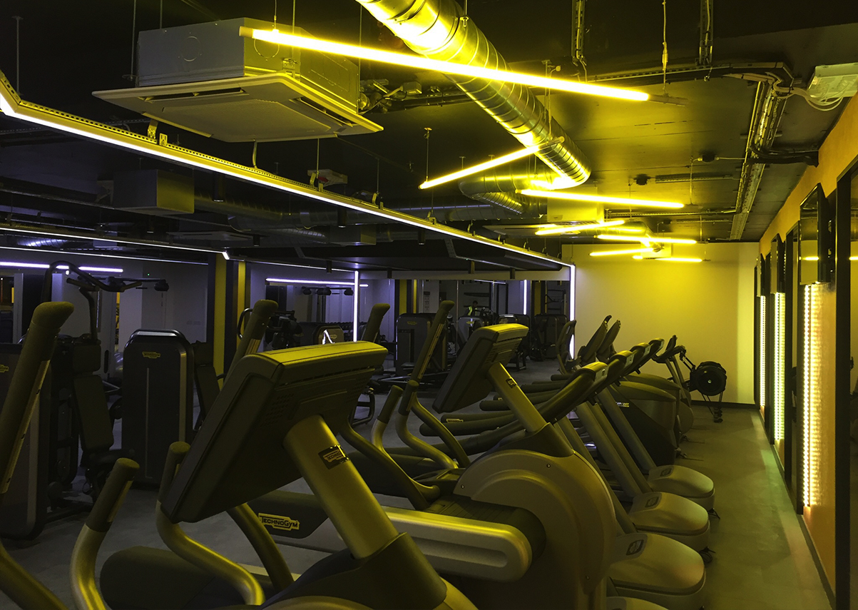 Gym Interior Design Examples from Spot This Space